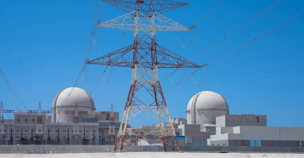 nuclear plant wam