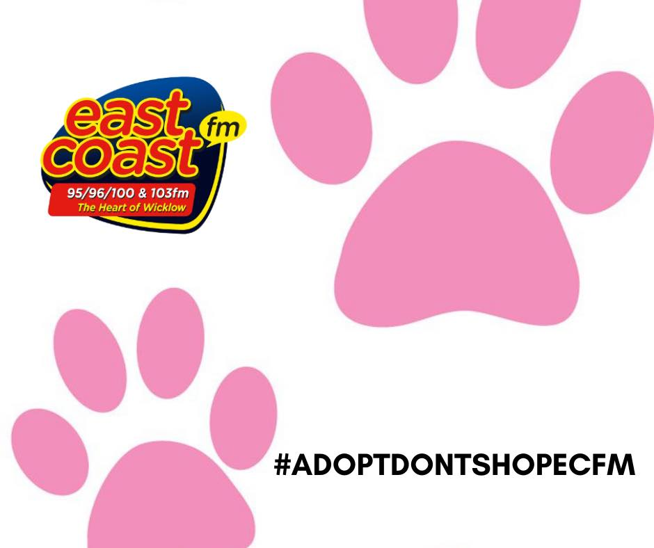 Adopt Don't Shop ECFM