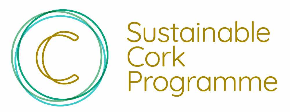 Cork Chamber to begin sustainable recovery programme - Cork's 96FM