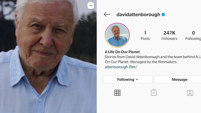 Sir David Attenborough Just Shattered A Guinness World Record