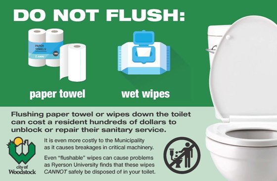 Watch What You Flush Down the Toilet