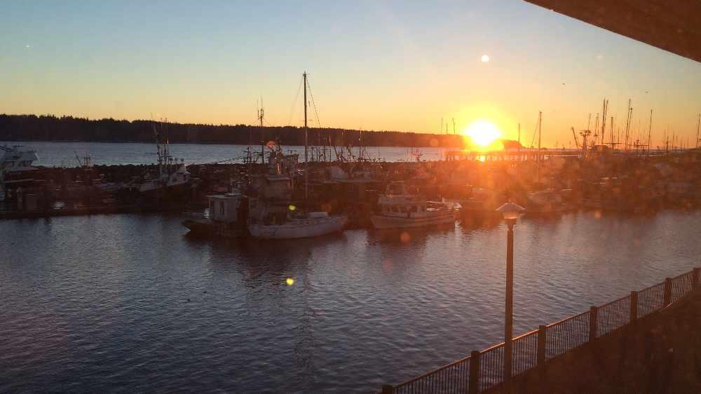 Campbell River marina sunrise