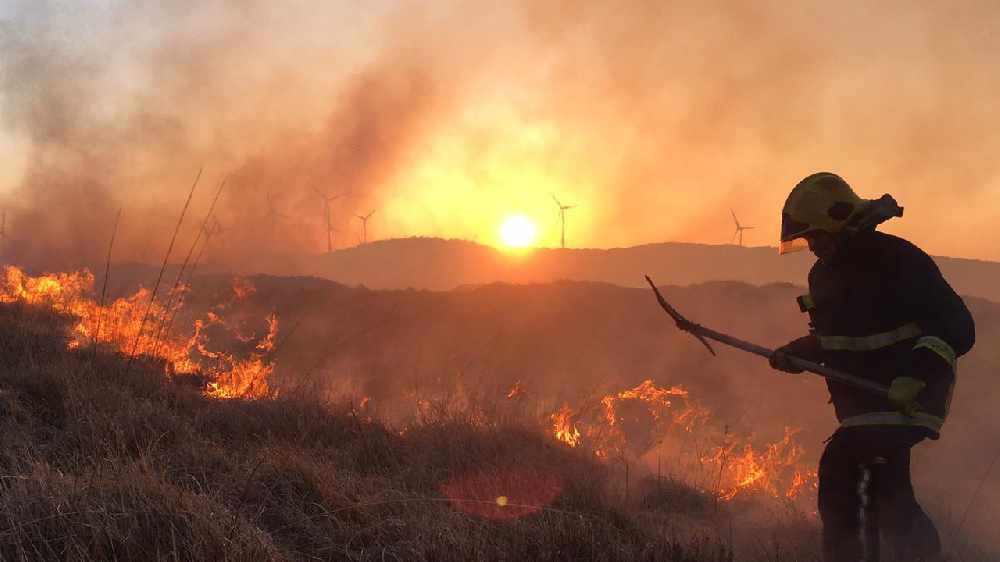 Fire service battles gorse fires